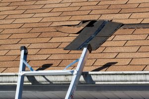 What to Do When Shingles Fall Off Your Roof